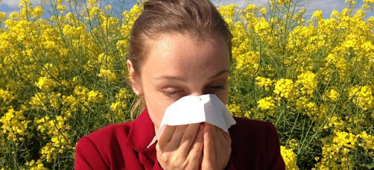 Světový den alergie a astmatu