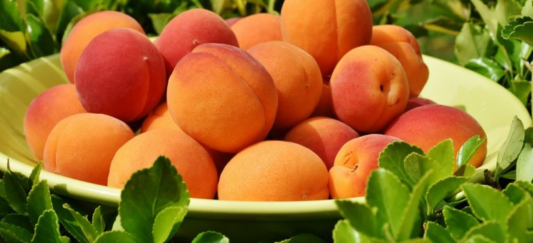 Meruňky a broskve na vašem stole